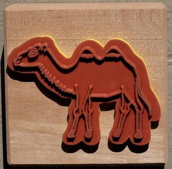 Kamel Einzelstempel
